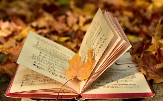 Rekomendacje z cyklu zajrzyj do świata książek.