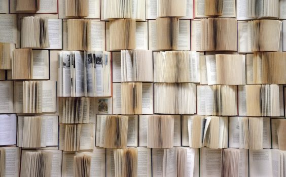 Federacja Bibliotek Cyfrowych.